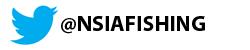 NSIA Twitter logo